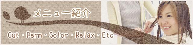 メニュー紹介(Cut・Perm・Color・Relax・Etc)
