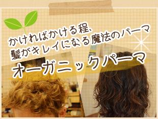 オーガニックパーマ かければかける程、髪がキレイになる魔法のパーマ