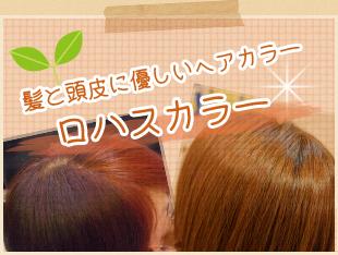 ロハスカラー 髪と頭皮に優しいヘアカラー
